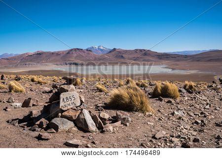 Altitude 4855 m above sea level. Mountains of Altiplano Bolivia South America