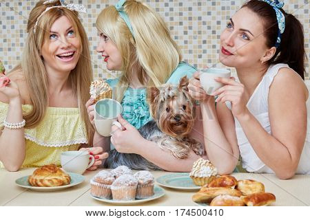 Three young women gossipers and little dog sit at table with baked sweets in kitchen.