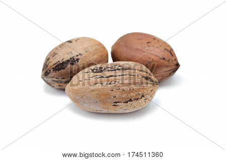 nuts pecans isolated on white background. Nuts pecans in shell closeup