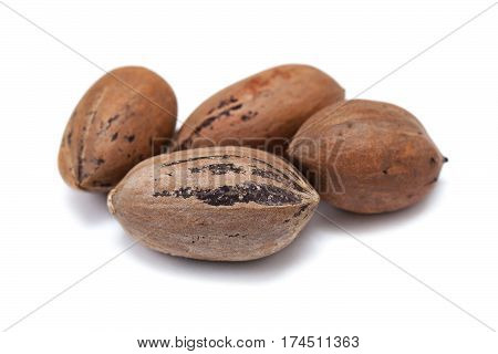 Nuts pecans in shell closeup isolated on white background