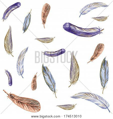 watercolor background with feathers of different styles