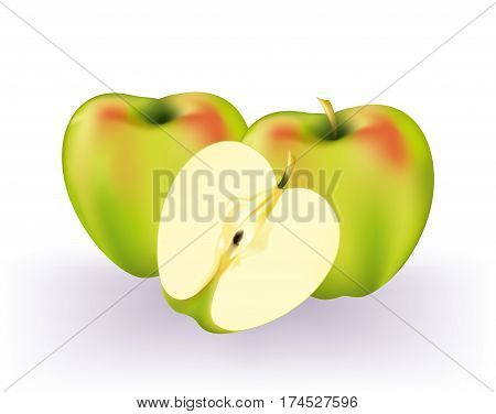 Delicious green apples and cross-section on white background