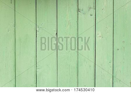 Background texture green old board in the daytime