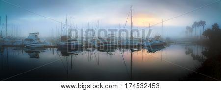 Morning fog in Fiddler's Cove near Coronado California.