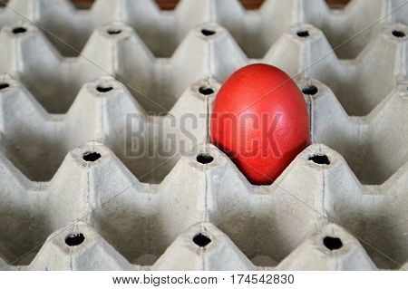 Red Easter egg in the egg box