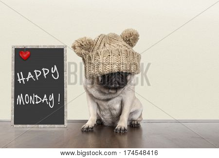 cute pug puppy dog with bad monday morning mood sitting next to blackboard sign with text happy monday copy space