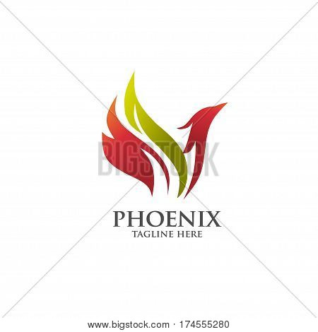 best luxury phoenix consulting element logo vector concept, phoenix circle logo concept