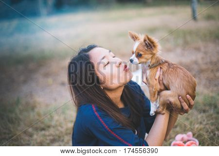 Young woman with a ponytail giving a kiss to her cute little brown chihuahua dog. Dog Lovers concept.