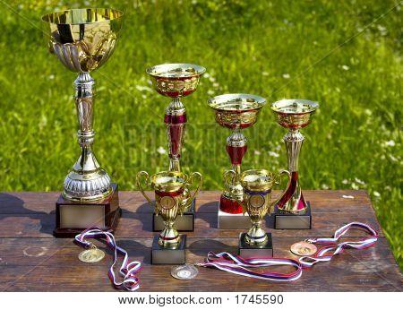 Sporting Awards