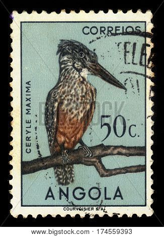 Angola - CIRCA 1951: A stamp printed in Portugal shows african giant kingfisher (ceryle maxima), living area in sub-Saharan Africa, circa 1951