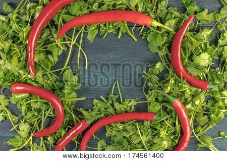 A wreath of cilantro leaves with red hot chili peppers and a place for text