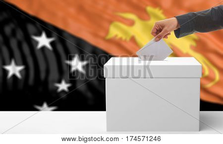Voter On A Papua New Guinea Flag Background. 3D Illustration