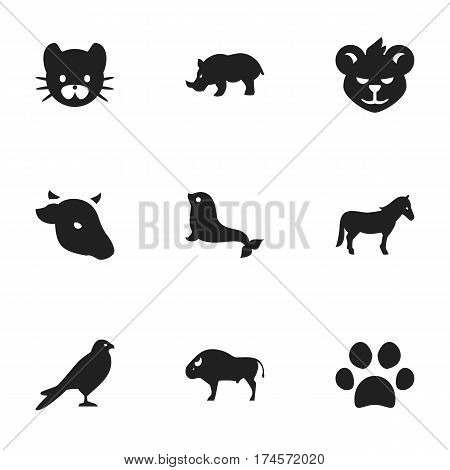 Set Of 9 Editable Animal Icons. Includes Symbols Such As Stallion, Bull, Feline And More. Can Be Used For Web, Mobile, UI And Infographic Design.