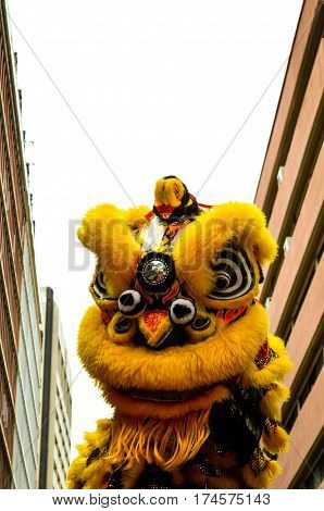 yellow dragon dancing at chinese newyear, Kuala Lumpur