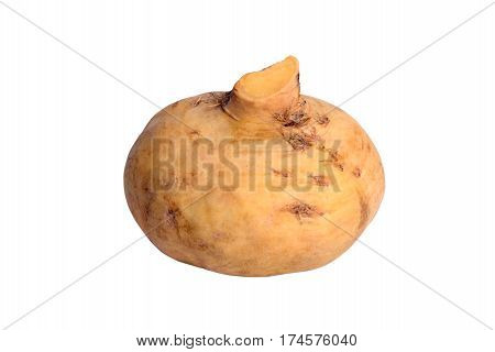 Yellow turnip isolated on the white background