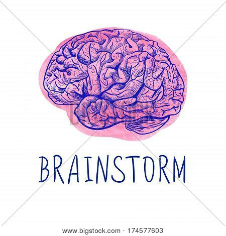 BRAINSTORM letters and blue drawing of human brain on pink watercolor spot isolated on white