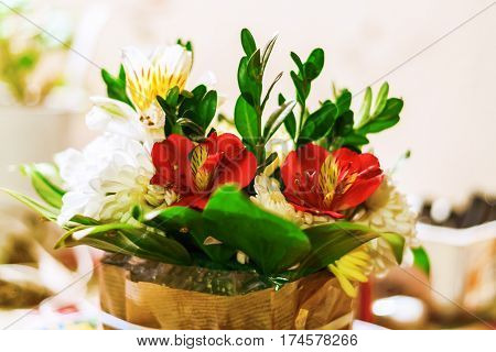 Colorful Romantic Bouquet Of Roses, Orchids And Lily Of The Incas Alstroemeria Close-up In Blur