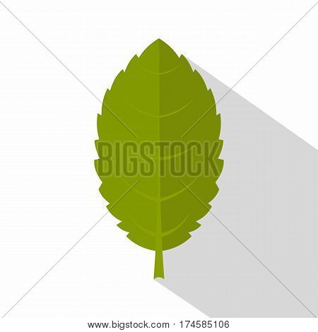 Green plum leaf icon. Flat illustration of green plum leaf vector icon for web isolated on white background