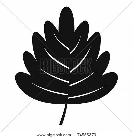 Hawthorn leaf icon. Simple illustration of hawthorn leaf vector icon for web