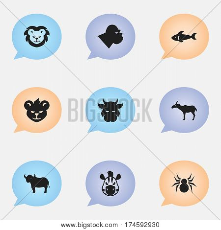 Set Of 9 Editable Nature Icons. Includes Symbols Such As Ox, Shark, Gazelle And More. Can Be Used For Web, Mobile, UI And Infographic Design.