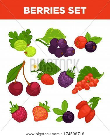 Berries set of gooseberry, black currant or redcurrant, strawberry and raspberry. Vector isolated icons of forest blackberry and blueberry, briar berry or cranberry and garden cherry