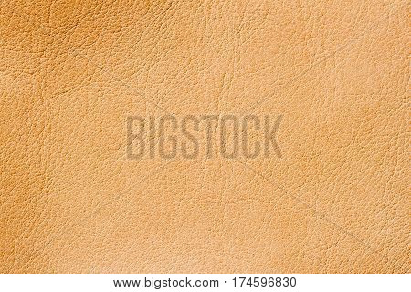 Texture of background for a designer, pattern of genuine leather surface. For background , backdrop, substrate, composition use. With place for your text