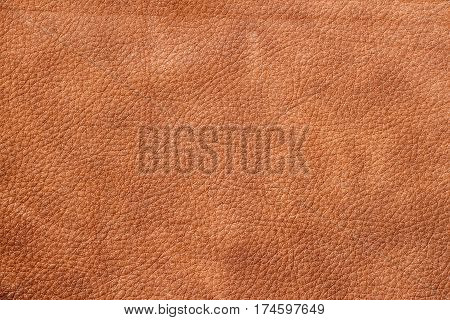 Texture of background for designer, pattern of genuine leather surface. Brown. For background , backdrop, substrate, composition use. With place for your text