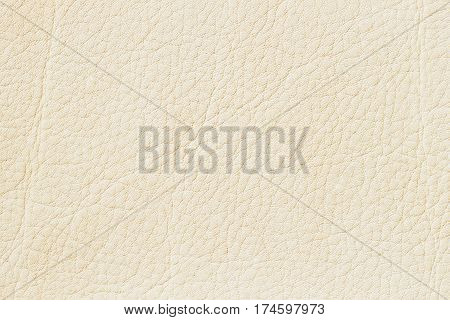 Texture of background for designer, pattern of vintage genuine leather surface. Light color. For background , backdrop, substrate, composition use. With place for your text