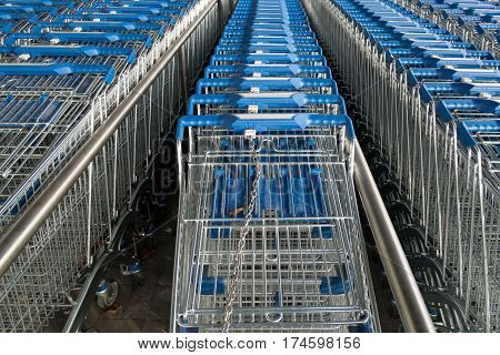 Chained up shopping carts in a line