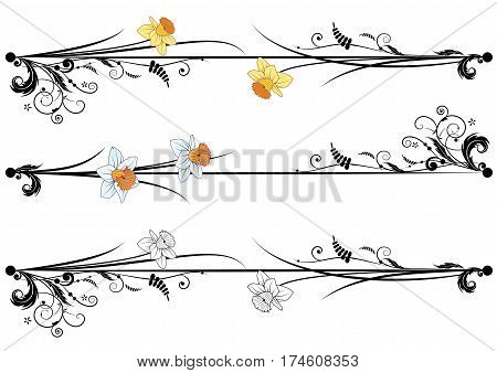 set of vector spring dividing with flowers of narcissus
