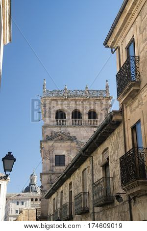 Salamanca (Castilla y Leon Spain): a tower of the historic building known as Palacio de Monterrey