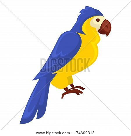 Ara parrot standing still isolated on white. Vector close up illustration of tropical colorful bird that lives in jungles. Big flying animal with blue and yellow feathers, brown beak and paws.
