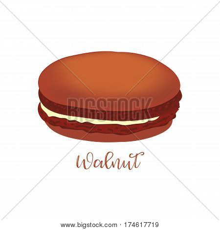 Walnut french macaroon isolated on white background. Can be used for banner, flyer, menu, wrapping paper. Vector art image illustration.