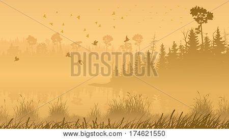 Horizontal illustration misty coniferous forest with lake and grass on shore.