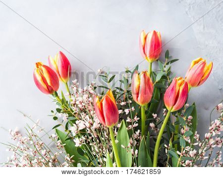 Spring Easter Tulip Floral Minimal Pastel Color Background