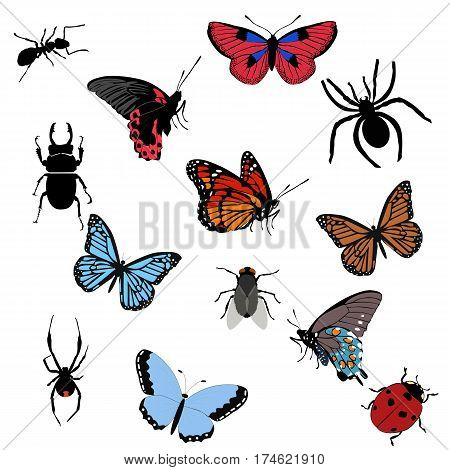 set of colored icons insects. collection of butterflies beetles and spiders. template vector illustration. wildlife