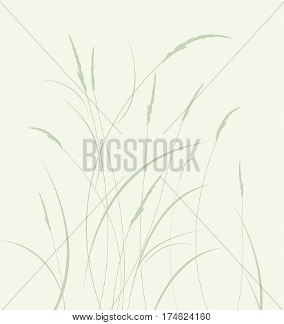 Vector illustration grass in a meadow, natural landscape background