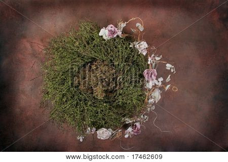 Fantasy Bird Nest Photographer Studio Set (Insert Isolated Client) poster