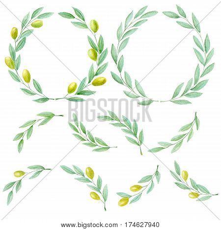 Set of watercolor hand drawn green olive branch on white background