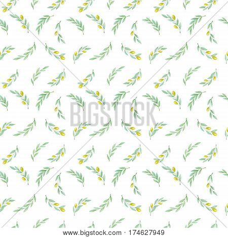 Hand drawn watercolor olive branch pattern texture on white background