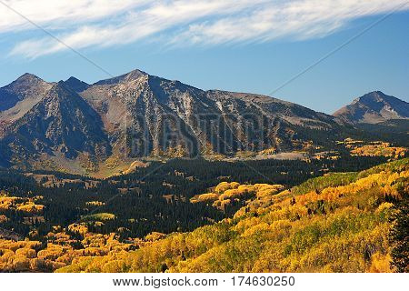 Autumn aspens near Kebler Pass in the Colorado Rocky Mountains