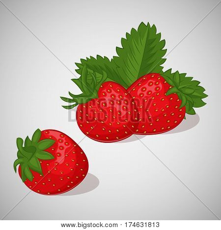 Bright juicy strawberry on grey background. Sweet delicious for your design in simple cartoon style. Vector illustration. Berries Collection.