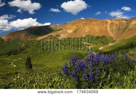 Paradise Basin and Mt. Baldy near Crested Butte in the Colorado Rockies