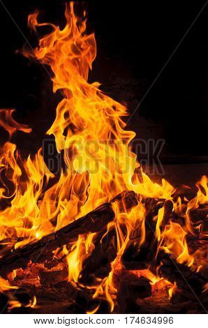 Yellow and hot blaze of fire in the dark