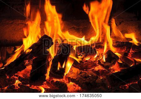 Camping fire. Burning fire flames on a black background.