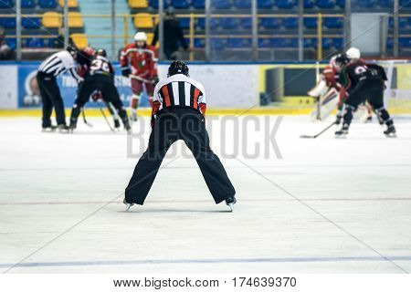 rear view on referee controls the hockey game.