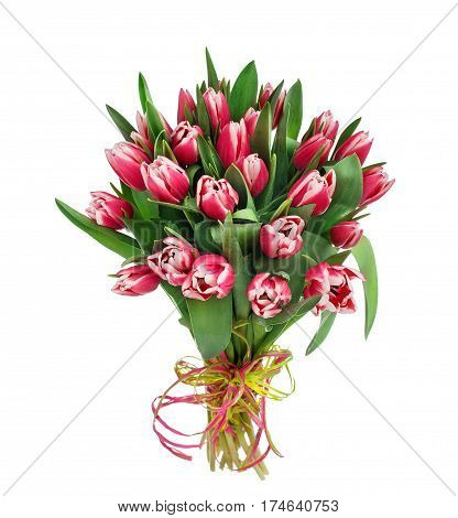 Bouquet of tulip flowers over white background