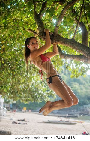 Sporty slim young woman wearing bikini climbing tree on a sandy beach at resort. Smiling sporty caucasian brunette girl hanging on branch doing chin-up exercises outdoors.