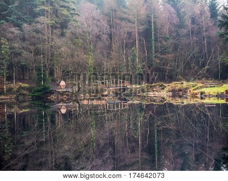 Reflection of trees in lake in Galloway park, Scotland