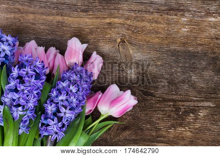 Pink tulips and blue hyacinths flowers on dark aged wooden background